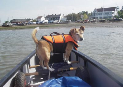 Jack Tar again in front of open canoe waiting to go ashore at west Mersea in Essex.